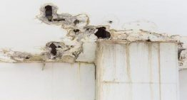 What to Consider for Choosing Fire and Water Damage Restoration Magnolia Texas Services