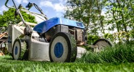 Are lawn service really expensive? Are they worth it?