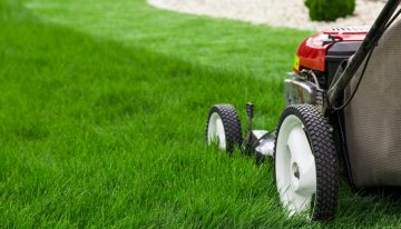 Lawn Care Services Year-Round
