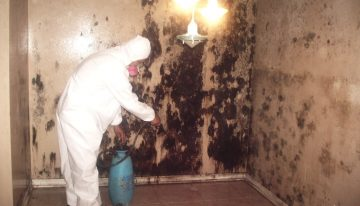 We Provide Our Content Cleaning Service Will Get Your Building Cleared Out Fastwith Great Results