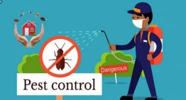 Take a step toward healthier and safer home by opting for regular pest control