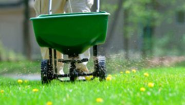 Benefits of organic fertilizers for your garden