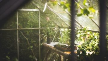 How to Choose Woven Landscape Fabric for Your Greenhouse