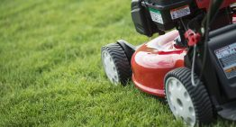 A Guide for Picking the Best Mower