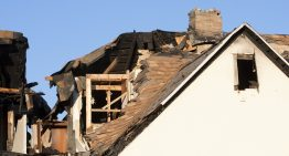 Proper Mold Remediation as Important Aspect of Disaster Repair Services