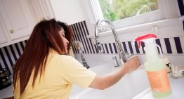 10 Services A Maid Can Provide For You