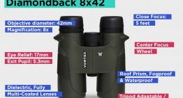 Reasons To Get A Pair Of Binoculars For Hunting