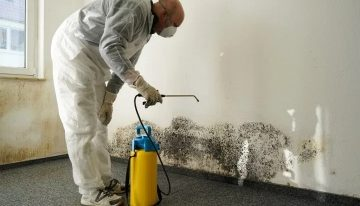MOLD CLEAN-UP: HOW TO DO IT?